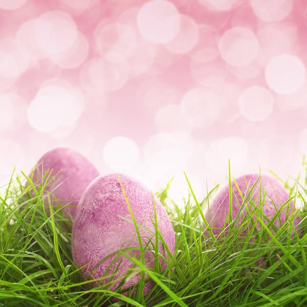 Pobyt Wielkanocny 2017